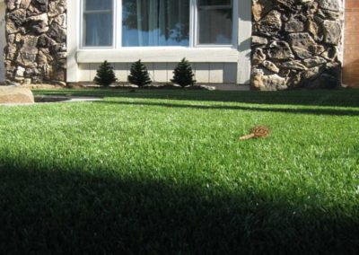 artificial synthetic grass installers 57