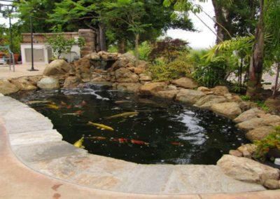 Koi Pond Installers 12