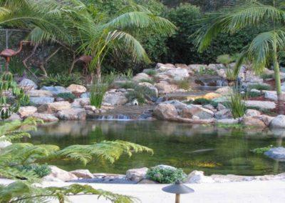 Koi Pond Installers 5