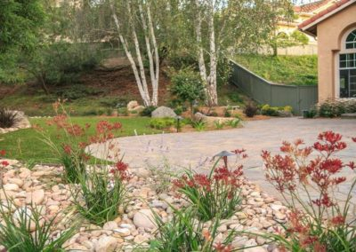 Xeriscape Landscaping Contractors 5